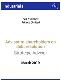 Advisor to shareholders on debt resolution
