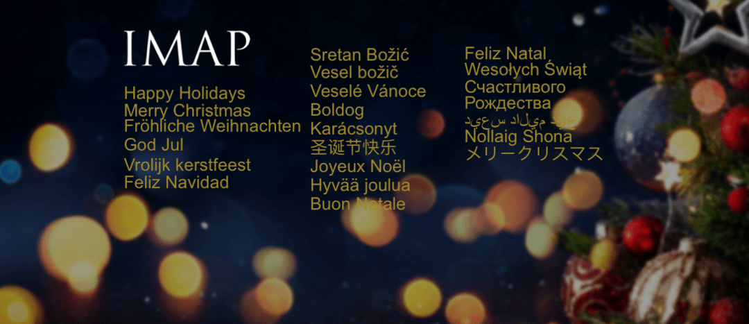 Merry Christmas and a Happy New Year from IMAP